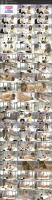 dvdms-270a-1080p-mp4.jpg