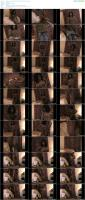 72092187_ebonyfemalebodybuilders-shelly-fields-what-a-presence-mp4.jpg