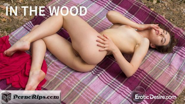 eroticdesire-18-05-12-dakota-in-the-wood.jpg