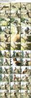 74121571_spandexporn_sp-m020-cisara-17_s.jpg