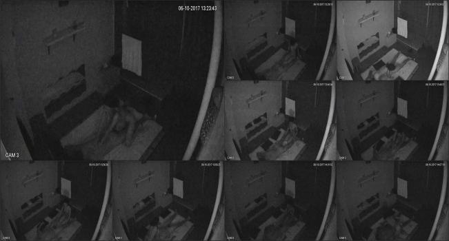 Hackingcameras_751